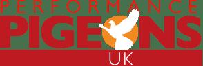 performance pigeons uk